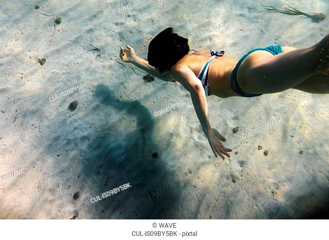 Woman in bikini underwater swimming near seabed, underwater view, Stintino, Sardinia, Italy