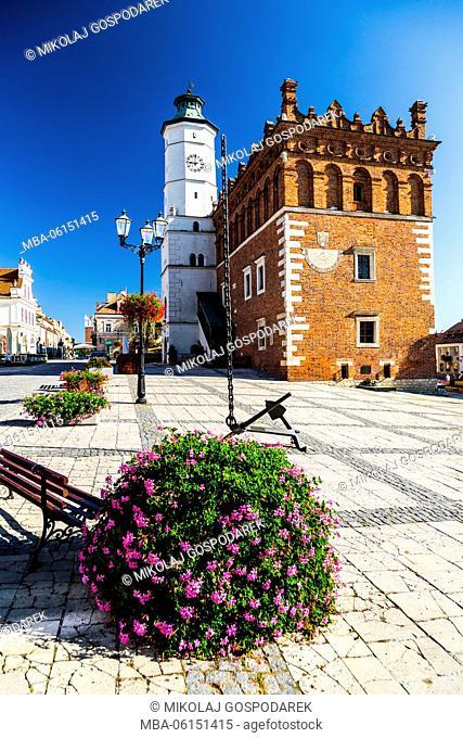 Poland, Swietokrzyskie, Sandomierz, Town Hall and Main Square