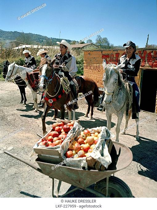 A wheelbarrow full of apples and men on horses in front of a workshop, Texocuixpan, community of Ixtacamaxtitlan Hernando Cortes went through in 1519