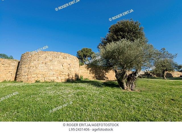 Remains of a strategic location of the Indigetes from the pre-Roman period, Ullastret, Spain