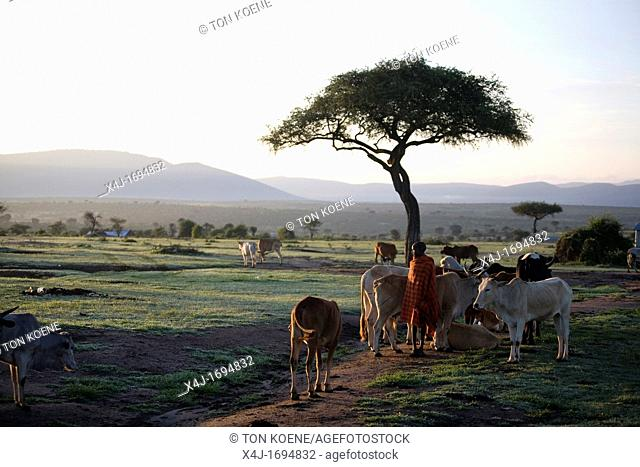 Ngoiroro is a village of 200 inhabitants, all belonging to the Massai Tribe The village lays right in the rift valley, south of Nairobi against the tanzanian...
