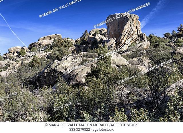 The Fig Tree granite cliffs and cistus ladanifer at Pedriza Regional Park. Madrid. Spain. Europe