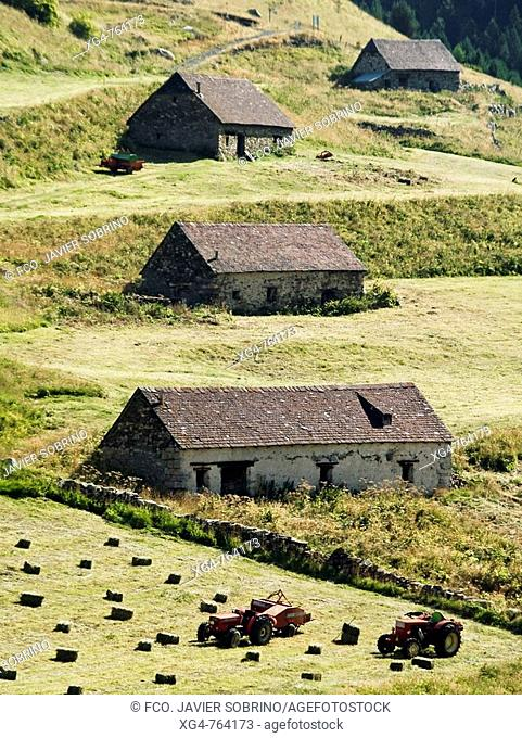 Farm works in meadow and 'bordas' (isolated rural house), Viados, Posets-Maladeta Natural Park, Pyrenees Mountains. Aragon, Spain