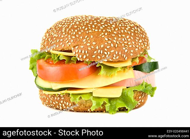 Tasty Hamburger