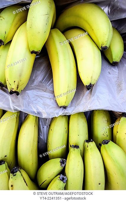 Display of Bananas at a Greengrocers, Crete, Greece