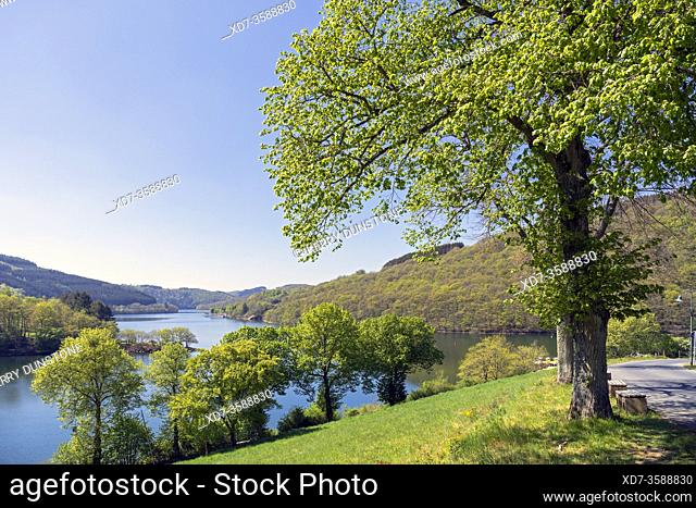 Europe, Luxembourg, Diekirch, Lultzhausen, Views of Lac Sure from Viewpoint