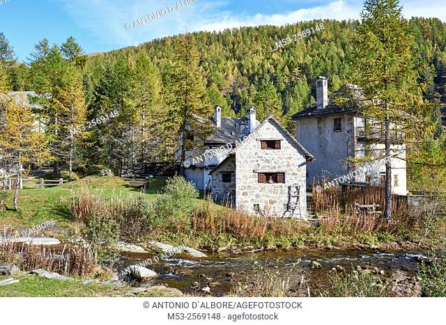 View of mountain cottages surrounded by a forest at Alpe Devero alpine village. Municipality of Baceno. Province of Verbano-Cusio-Ossola. Piedmont