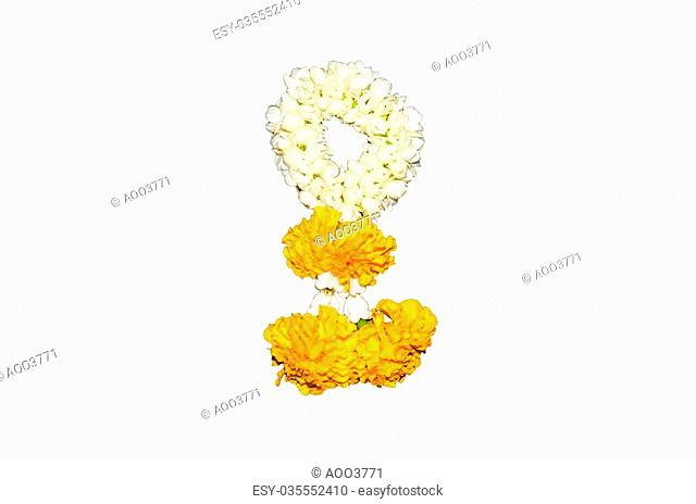 A jasmine garland isolated on the white background