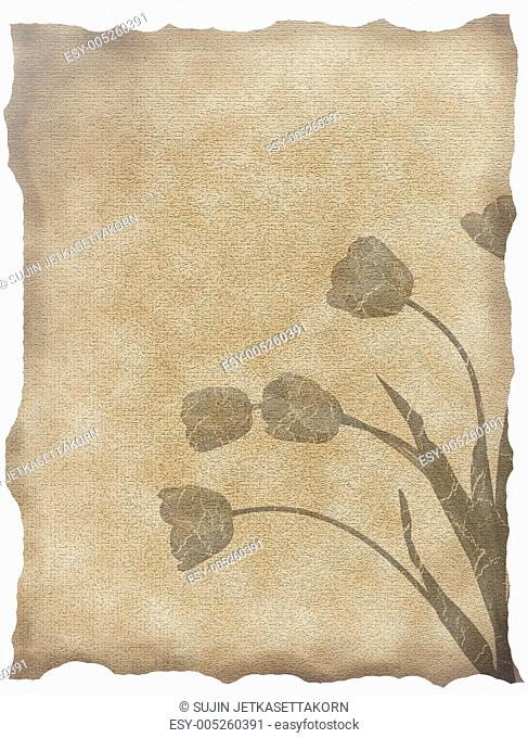 textured old paper background with tulips