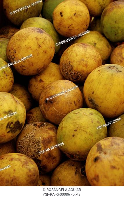 Fruit, tropical, bacuri, Belém, Pará, Brazil