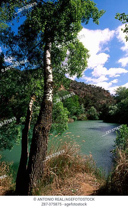 Júcar River, La Manchuela region. Albacete province, Spain
