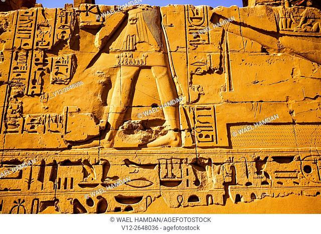 Relief, Temple of amun, Karnak, Luxor ruins, Egypt