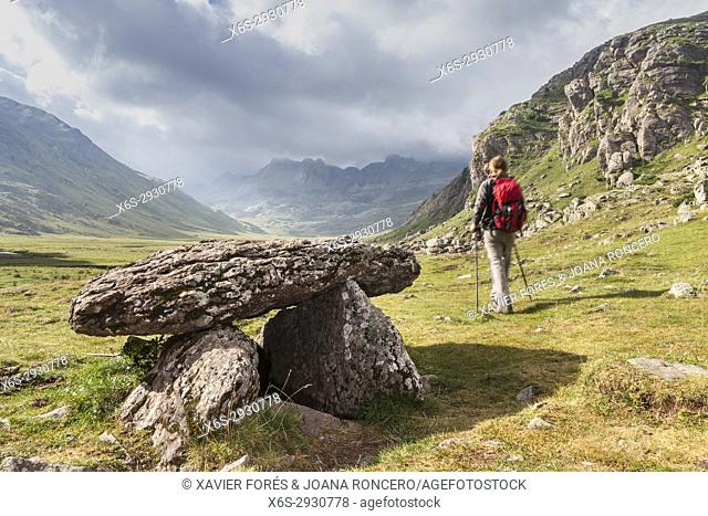 Dolmen in Aguas Tuertas in Hecho valley, Pyrenees, Huesca, Spain