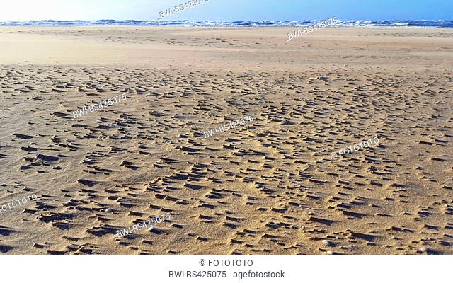 wide sandy beach at the North Sea, Netherlands