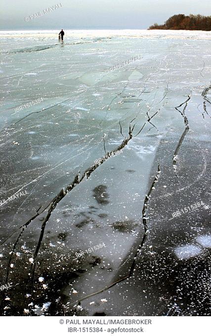 Man walking with bicycle on cracked ice, Chiemsee lake, Chiemgau, Upper Bavaria, Germany, Europe