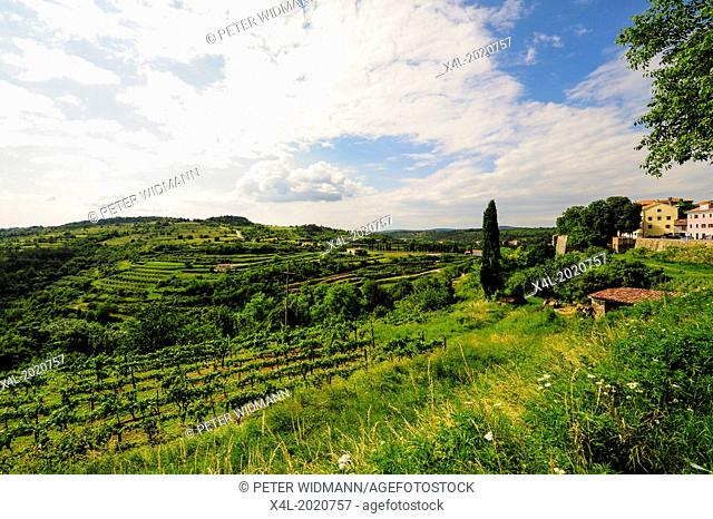 Istria, Croatia, Obertal, Portole, Oprtalj
