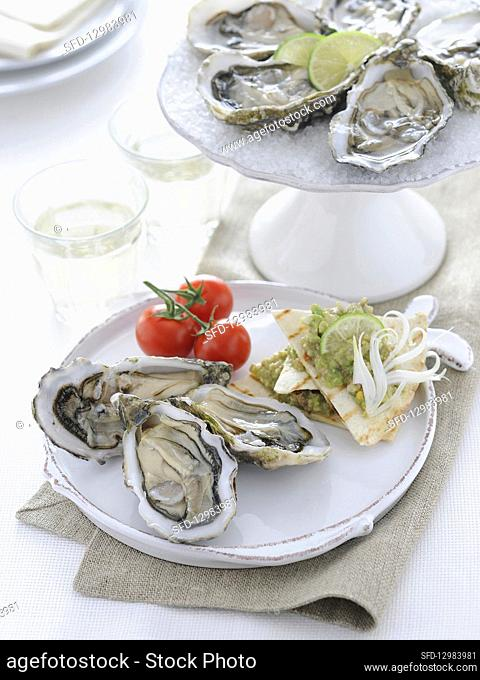 Half dozen fresh opened oysters in shell with lemon