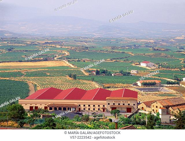 Wine cellar and vineyards. Laguardia, Alava province, Basque Country, Spain