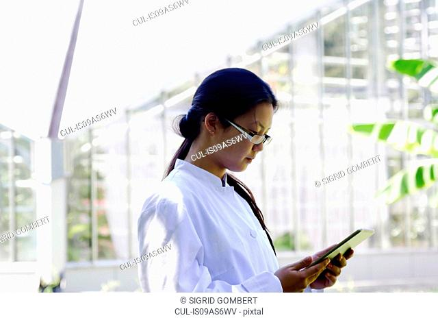 Young female scientist reading digital tablet in lab greenhouse