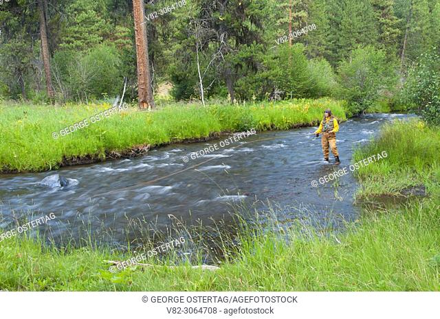 Fly fishing, North Fork Malheur Wild and Scenic River, Malheur National Forest, Oregon