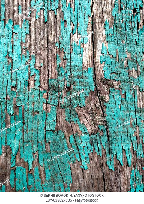 The texture of cracked blue paint on wood . For background