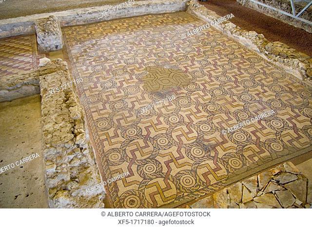 Roman Villa of Almenara Puras, Roman Ruins, Valladolid Province, Castilla y León, Spain, Europe