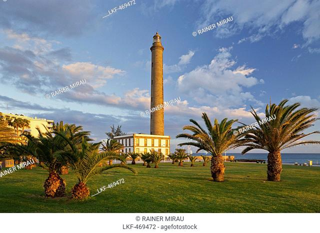 Lighthouse in Maspalomas with palm trees, Gran Canaria, Canary Islands, Spain