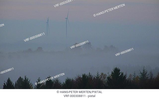 Fog over landscape