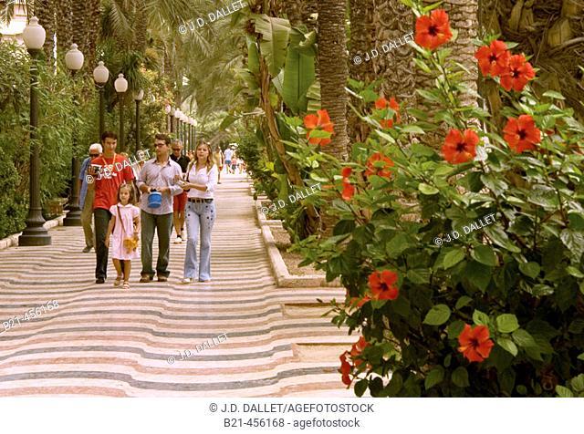Paseo at Alicante. Spain