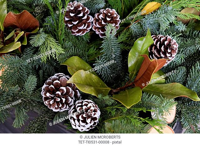 Pinecones and greenery