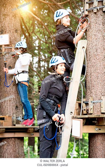 Friends up tree preparing to use high rope course