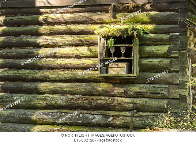 Canada, BC, Saltspring Island. Rustic log cabin in the woods. Quaint tableau display of wine glasses in the window