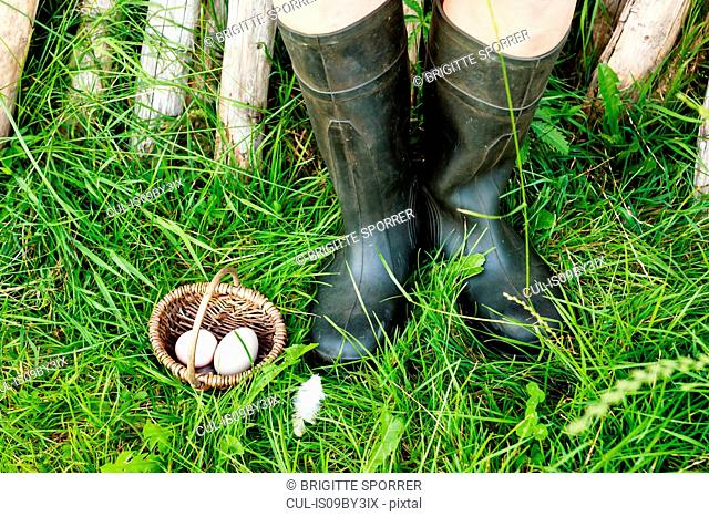 Two eggs in basket beside pair of legs wearing boots