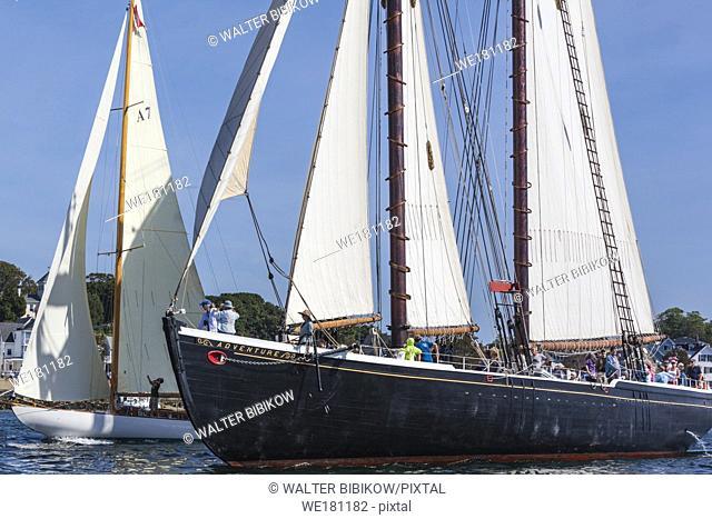 USA, New England, Massachusetts, Cape Ann, Gloucester, Gloucester Schooner Festival, schooner parade of sail, NR