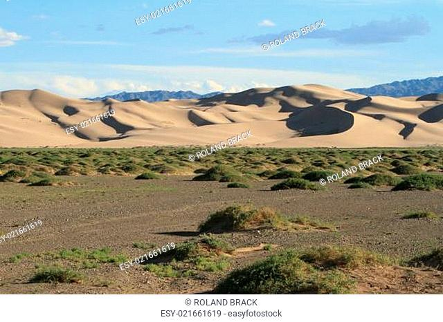 Dünen in der Wüste Gobi Mongolei