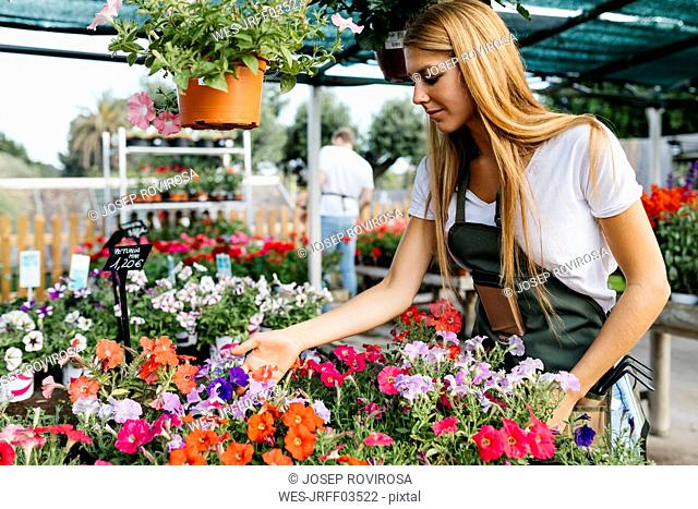 Female worker in a garden center caring for flowers