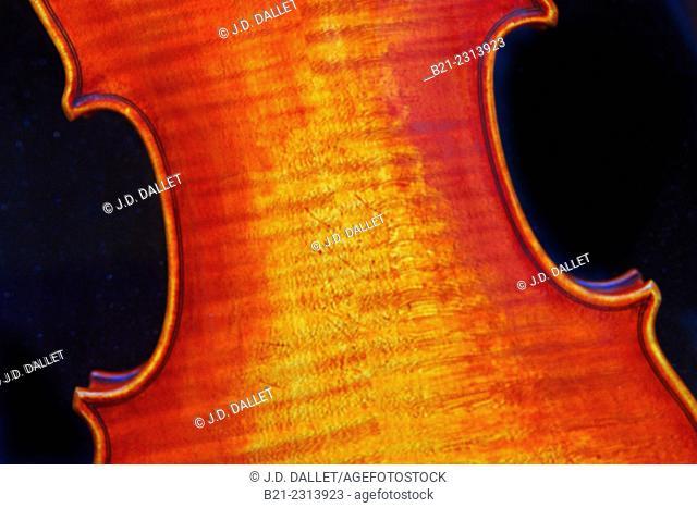 Back part of a violin