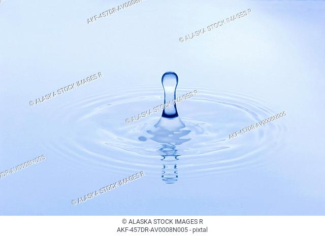 Close up of water droplet hitting the surface of water Studio Alaska