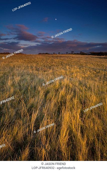 England, Tyne and Wear, Killingworth, The last rays of the setting sun paint a colourful scene across Killingworth Moor