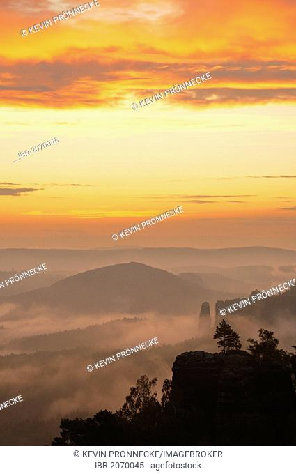 Fog over Nassen Grund, Elbe Sandstone Mountains, Saxony, Germany, Europe