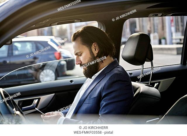Businessman using cell phone in a car