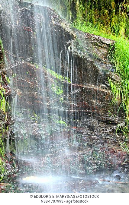 Waterfall, El Avila National Park, Caracas, Venezuela