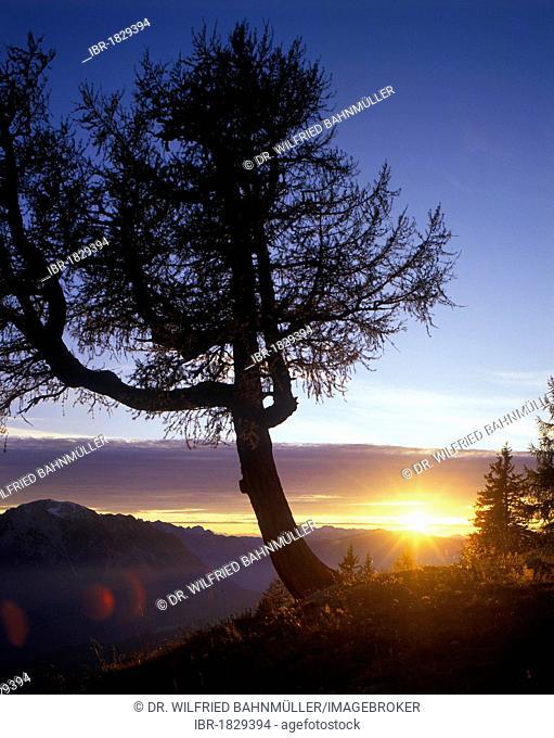 Evening light on Loser Mountain, Salzkammergut, Ausseer Land, Styria, Austria, Europe