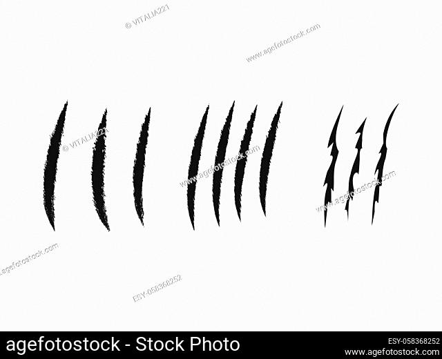 Set of claw scratches. Animal predator sign collection. Vector illustration isolated