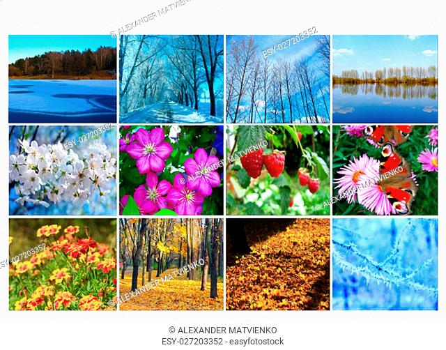 blank with different twelve colored images of nature for calendar