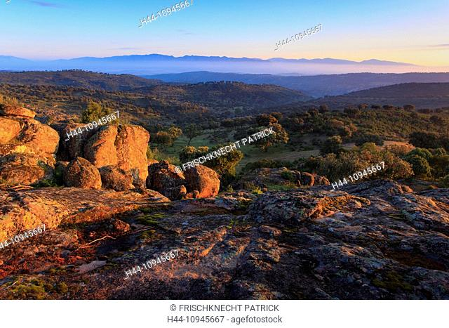 Andalusia, tree, mountains, trees, cliff, rock, cliff, mountains, mountain train, morning, morning mood, national park, Sierra de Andújar, province Jaén