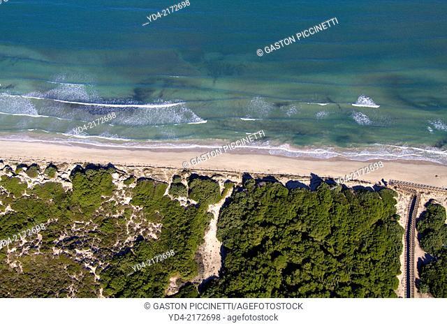 Aerial view of Alcudia Beaches, Alcudia Bay, Mallorca, Balearic Island, Spain