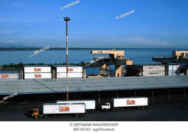 Harbour in Moin - Dole trucks - Limón Limon Costa Rica