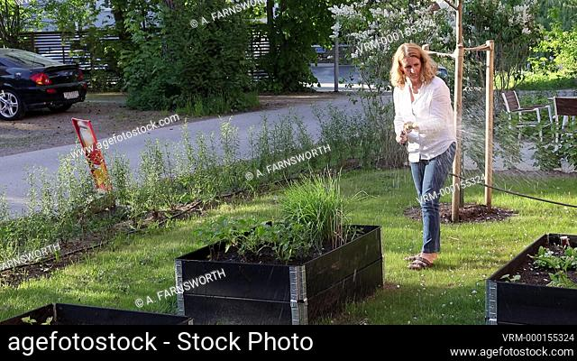 Stockholm, Sweden A woman waters her garden boxes in the evening