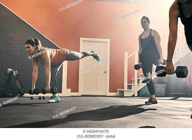 Group of women in gym exercising using dumbbells